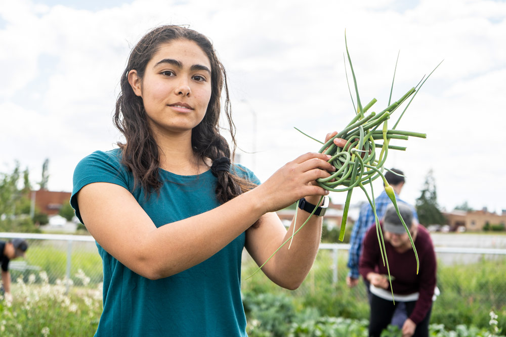 agriculture student holding freshly harvested scapes